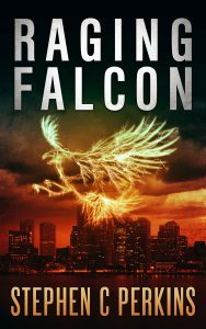 Raging Falcon by Stephen Perkins